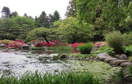 Japanischer_Garten_1